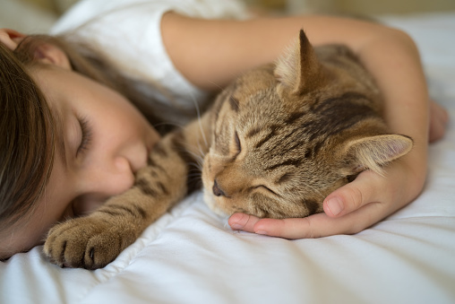 Child sleeping with cat