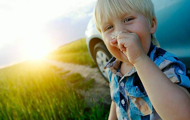 child sniffing a daisy stock photo