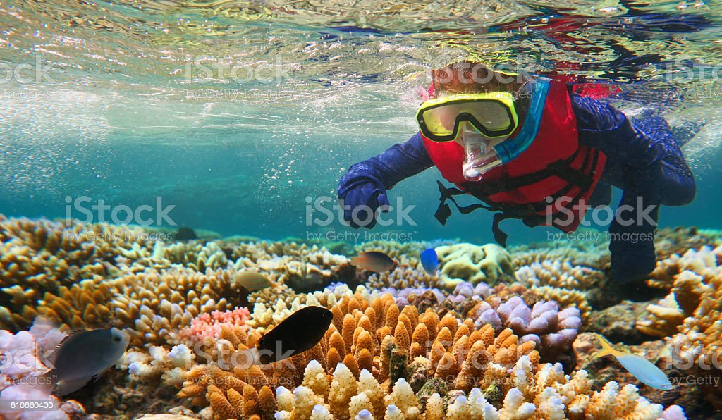 Child snorkeling in Great Barrier Reef Queensland Australia stock photo