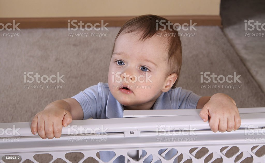 Child standing at baby gate stock photo