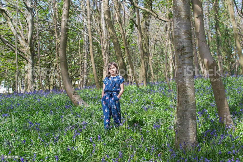 Child standing in the bluebell glen stock photo