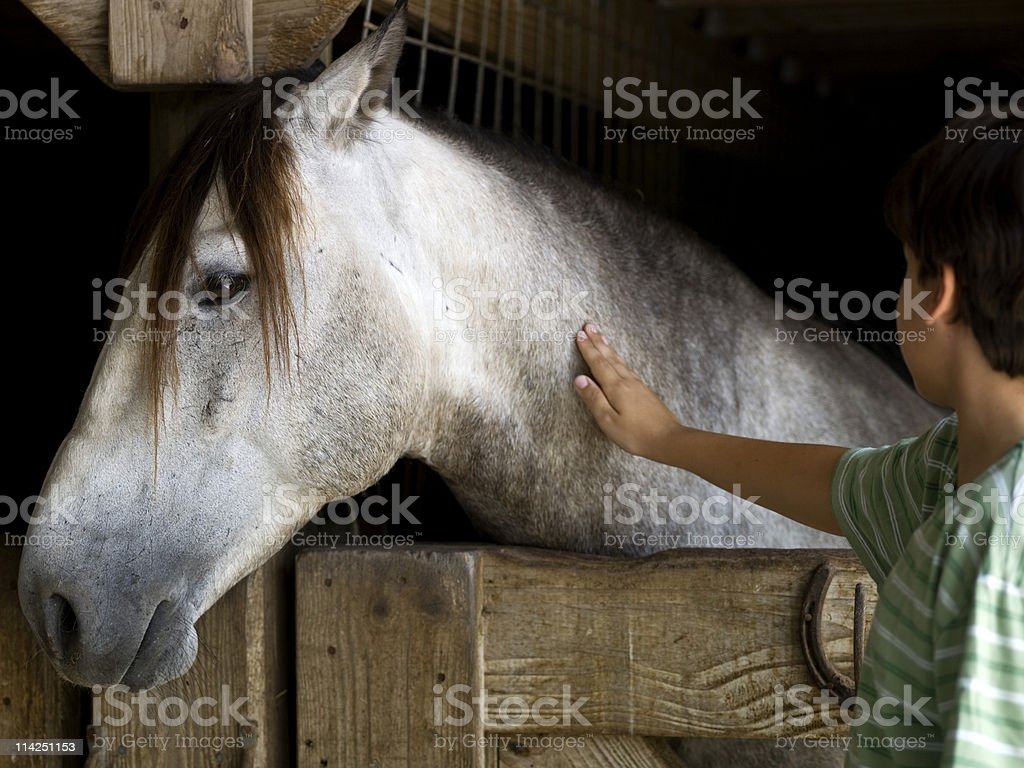 child stroking his horse royalty-free stock photo