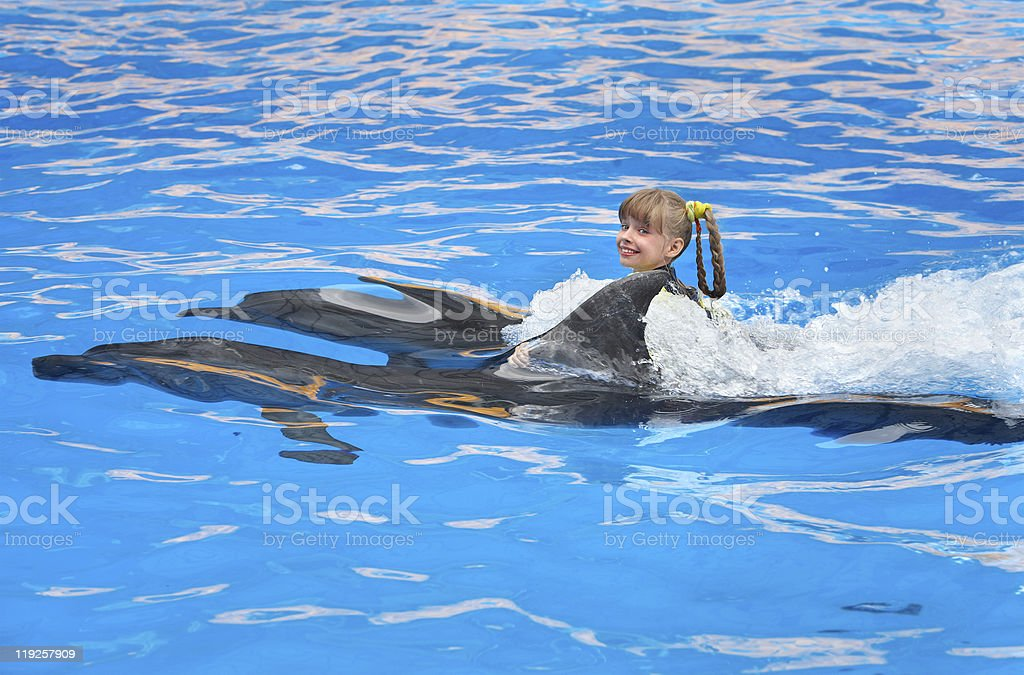 Child swimming with dolphin  in  water. stock photo