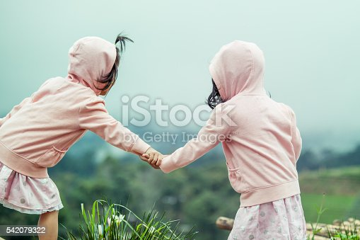 istock Child two cute little girls holding hand each other 542079322