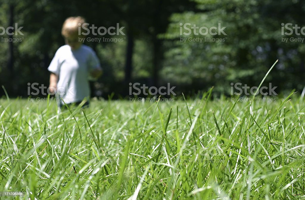 Child Walking in Grass royalty-free stock photo