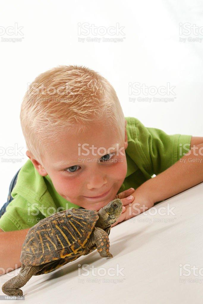 Child watching pet turtles uphill battle royalty-free stock photo