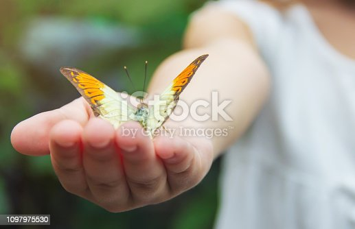 Child with a butterfly. Idea leuconoe. Selective focus. nature