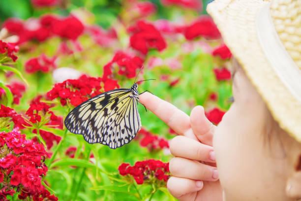 Child with a butterfly idea leuconoe selective focus picture id1097975584?b=1&k=6&m=1097975584&s=612x612&w=0&h=d7dksmouv1ske2usbc3uhpsag8ovacpfbpgk3iyr 8a=