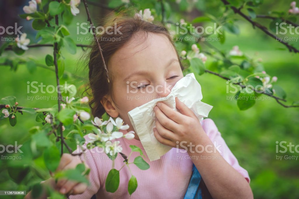 Little girl cleaning her nose because of allergy in spring time...