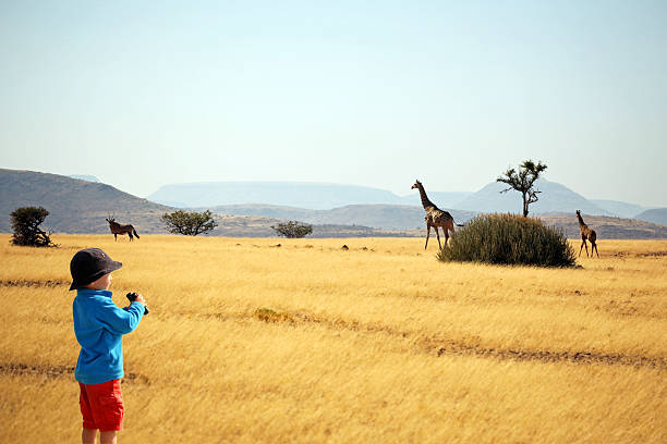 child with binoculars watching animals on safari in africa - binocular boy bildbanksfoton och bilder