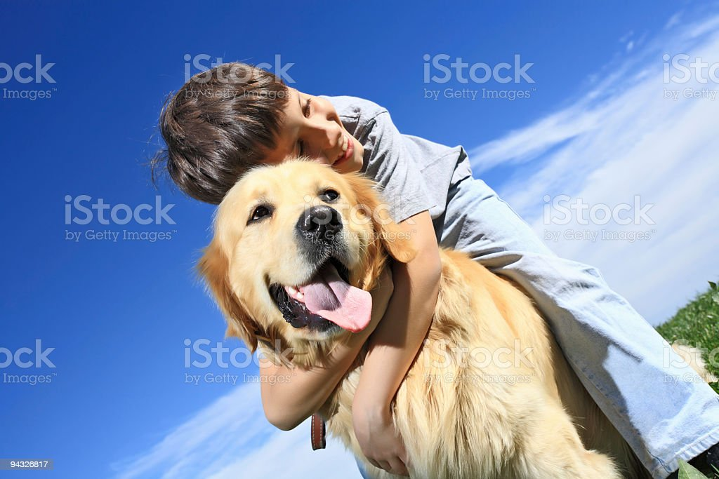 Child with  dog outdoor. stock photo