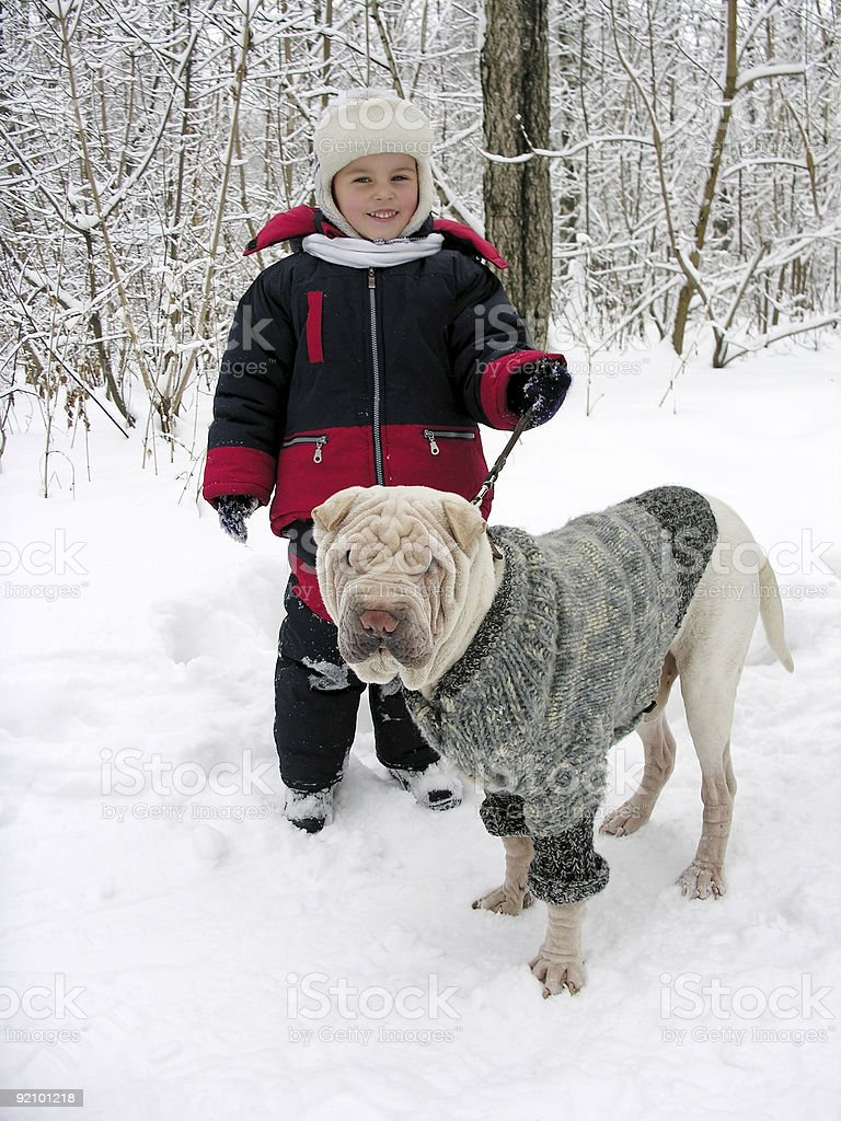 child with dog. winter. stock photo