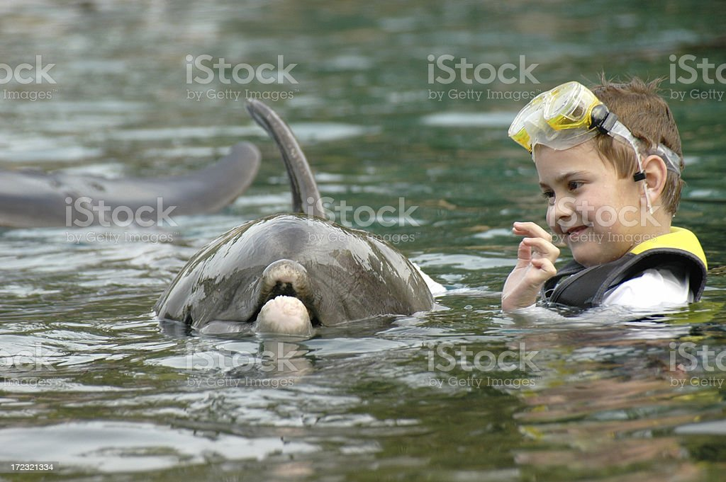 Child with dolphin stock photo