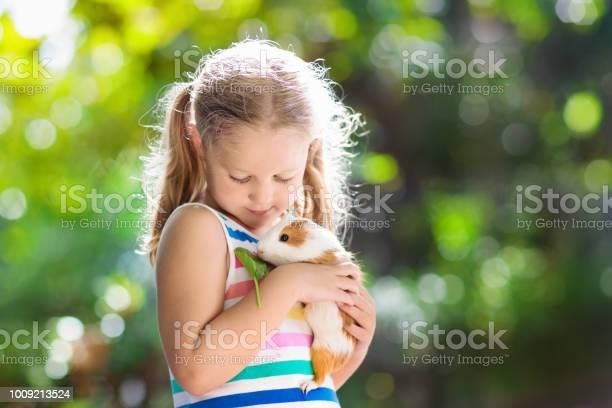 Child with guinea pig cavy animal kids and pets picture id1009213524?b=1&k=6&m=1009213524&s=612x612&h=n3zvzrjtdprd k4rr zwvlhtwbikafdov49llsra318=