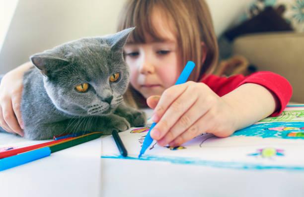 kind mit kitschigem zeichnen zu hause - katze zeichnen stock-fotos und bilder