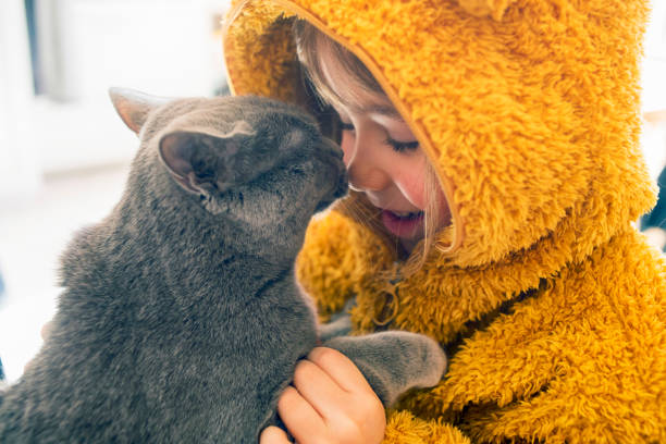 Child with kitty picture id1137432940?b=1&k=6&m=1137432940&s=612x612&w=0&h=i4b5bmb95ojjjir7d4cywz kgtmpgpn2dvjkhckjdm4=