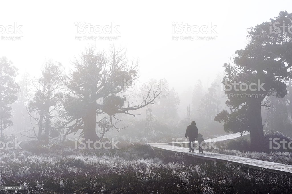 Child with parent in the fog stock photo