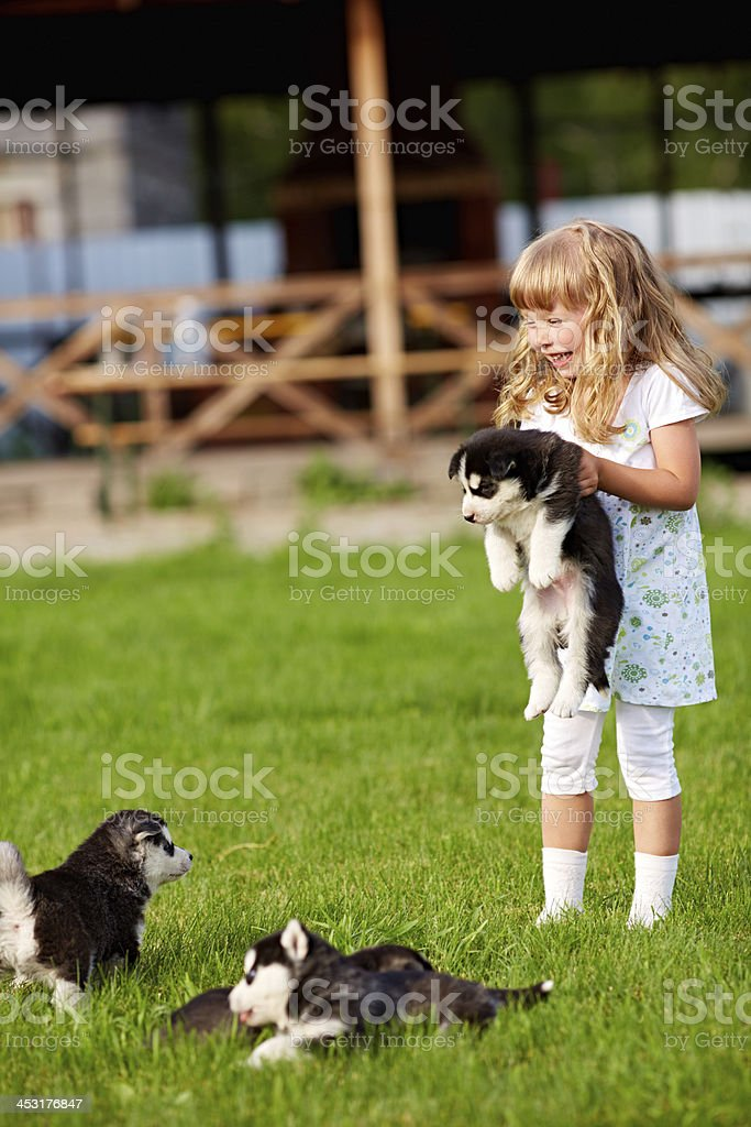 Child with puppies royalty-free stock photo