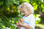 Child playing with white rabbit. Little boy feeding and petting white bunny. Easter celebration. Egg hunt with kid and pet animal. Children and animals. Kids take care of pets. Spring Easter garden.