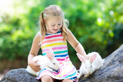 Child With Rabbit Easter Bunny Kids And Pets Stock Photo Download Image Now Istock