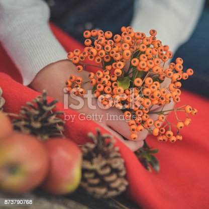 istock Child young girl pinky hands holding wild berries yellow and red fresh juicy apples on red plaid wrap close to strobiles in autumn spring mood appetite still life fruit-piece 873790768