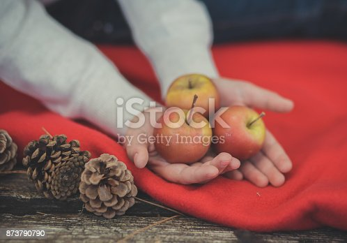 istock Child young girl pinky hands holding yellow and red fresh juicy apples on red plaid wrap close to strobiles in autumn spring mood appetite still life fruit-piece 873790790