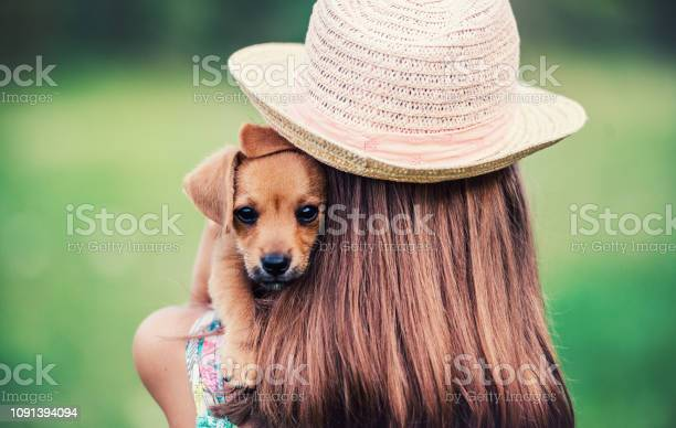 Childhood time little girl with a dog lifestyle pets and animals picture id1091394094?b=1&k=6&m=1091394094&s=612x612&h=ygre6tmw2ic3dg6c2gc7e uknmrrspxqpamvlfiguh8=