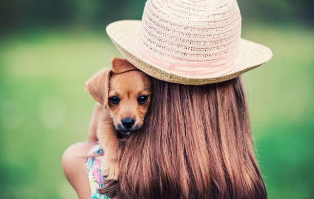 Childhood time. Little girl with a dog. Lifestyle, pets and animals concept stock photo