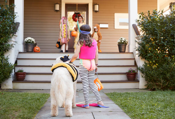 children and dog in halloween costumes for trick or treating - weranda zdjęcia i obrazy z banku zdjęć