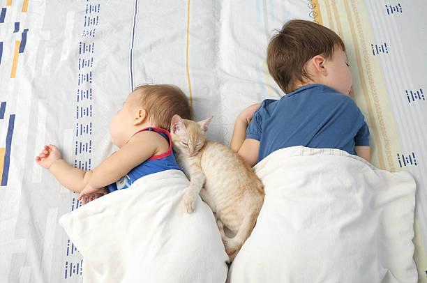 Children and pet sleeping together picture id526568653?b=1&k=6&m=526568653&s=612x612&w=0&h=yvyhlx0wqqaeirk7ilwojotcz7hrb8gzr6yiptiqqbq=