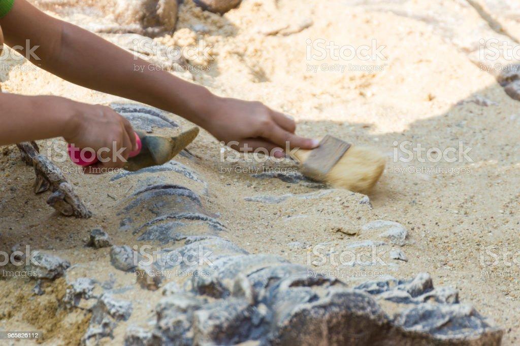 Children are learning history dinosaur - Стоковые фото Агрессия роялти-фри