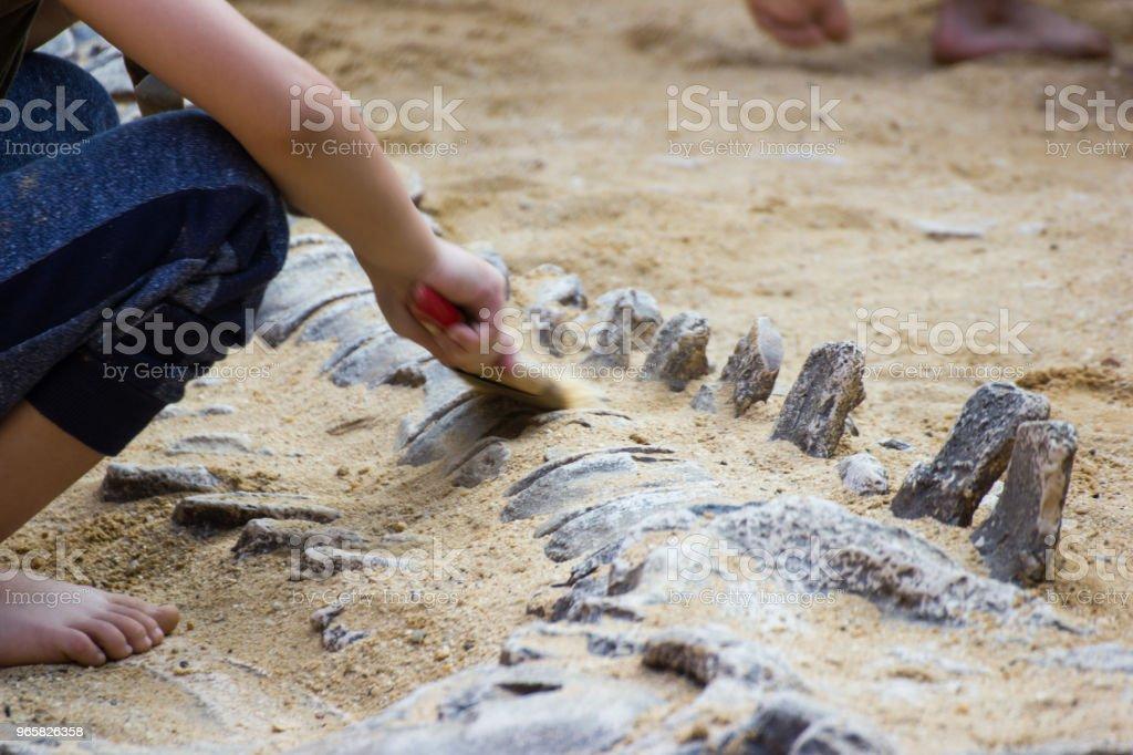 Kinderen leren geschiedenis dinosaurus - Royalty-free Agressie Stockfoto