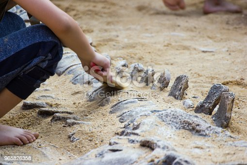 Children are learning history dinosaur, Excavating dinosaur fossils simulation in the park.