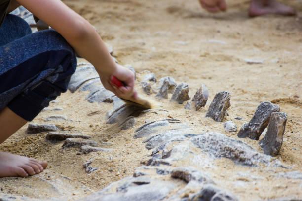 kinder lernen geschichte dinosaurier - dinosaurier stock-fotos und bilder