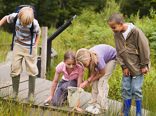 children at nature reserve - заповедник дикой природы стоковые фото и изображения