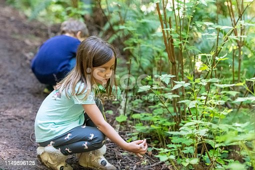 Caucasian Three years old boy and five years old girl picking clovers in the woods