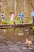 Children Crossing Bridge As Dog Plays In Stream