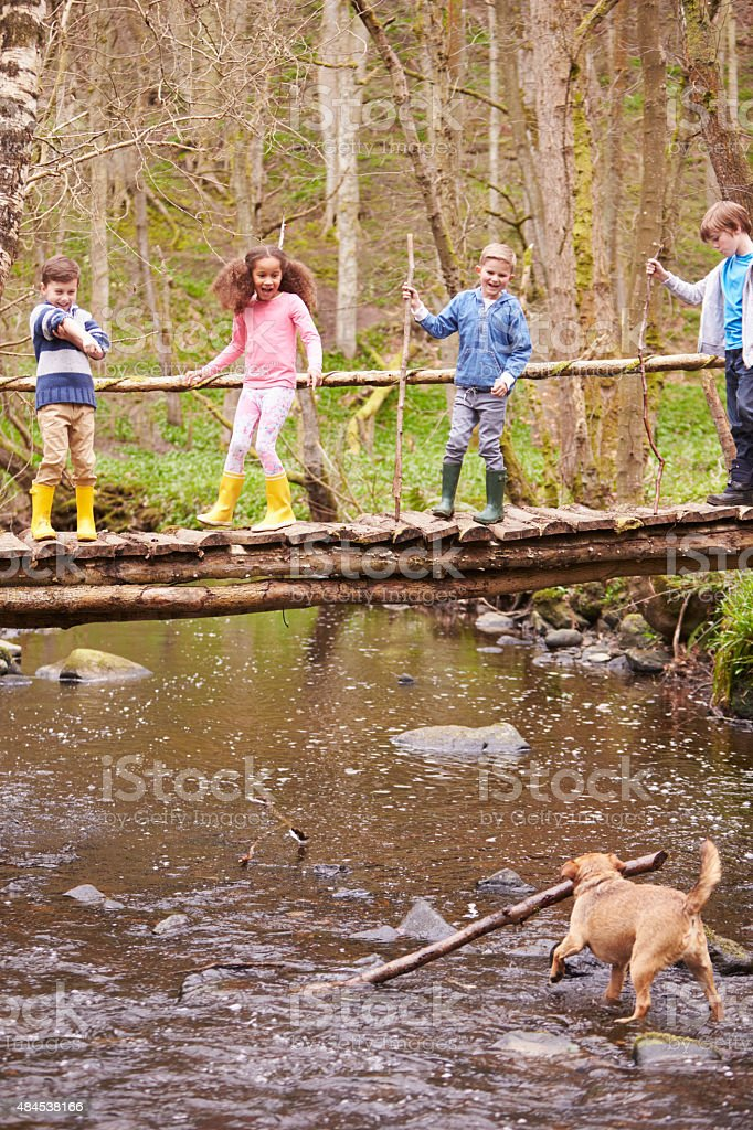 Children Crossing Bridge As Dog Plays In Stream stock photo