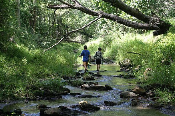children exploring a stream - bos spelen stockfoto's en -beelden