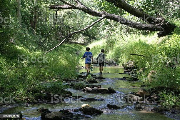 Photo of Children exploring a stream