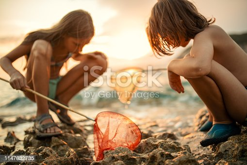 Playful children enjoying while trying to catch a fish fish fishing net along the rocky coast at low tide and exploring nature at sun. Terrain is beautiful and very inspiring for playing and adventure.