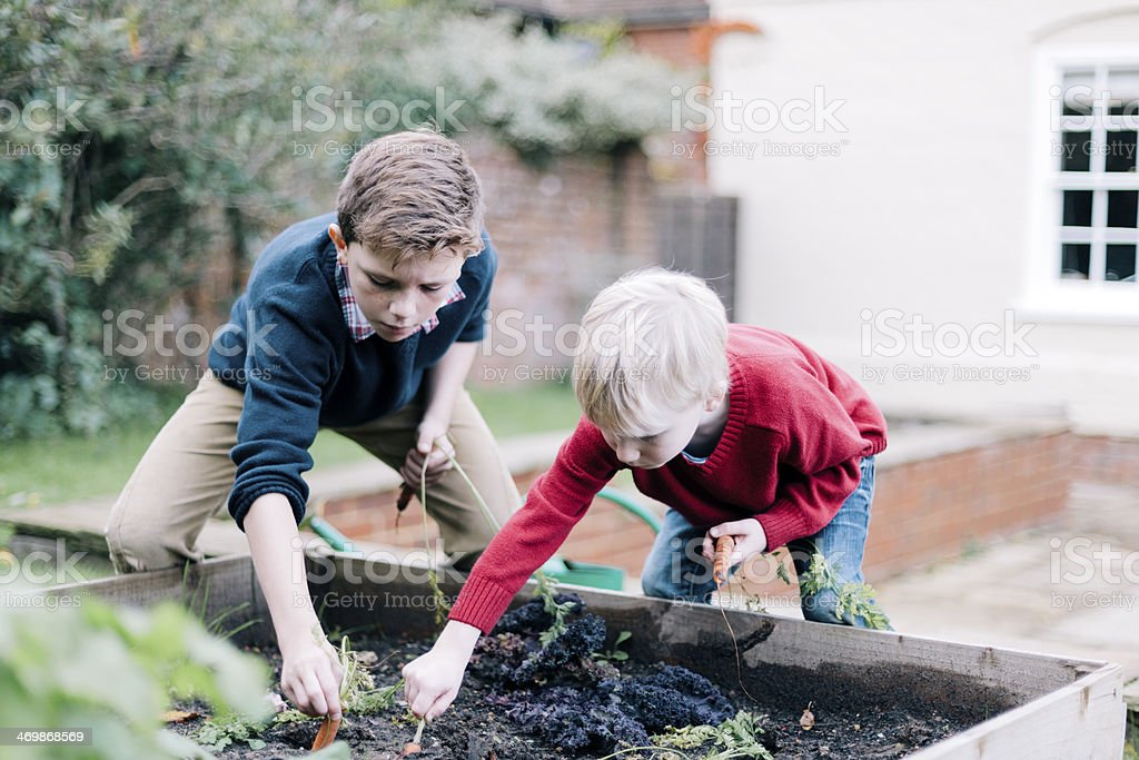 Enfants de jardinage - Photo