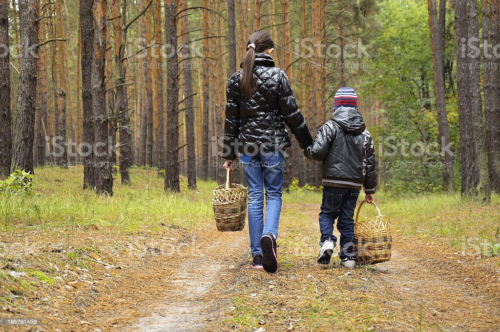 children go looking for mushrooms on a footpath royalty-free stock photo