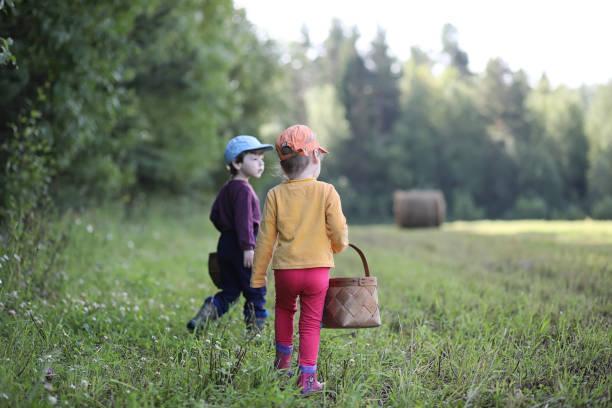 kinder gehen in den wald nach pilzen - zeckenmittel stock-fotos und bilder