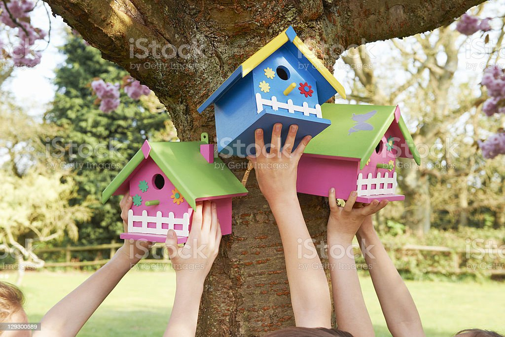 Children hanging birdhouses in tree stock photo