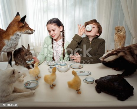 istock Children having a tea party with animals 56180603