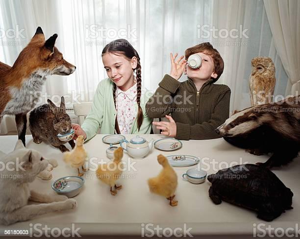 Children having a tea party with animals picture id56180603?b=1&k=6&m=56180603&s=612x612&h=kefim0mr79sejofb8hnqomiv cbv5znfeqcrsezrg58=