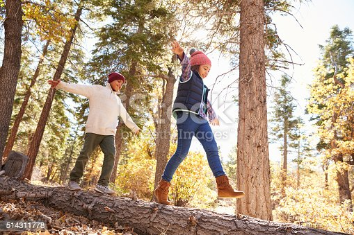 istock Children Having Fun And Balancing On Tree In Fall Woodland 514311778