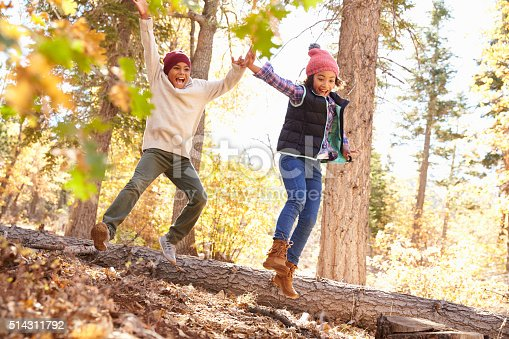 515278306 istock photo Children Having Fun And Balancing On Tree In Fall Woodland 514311792