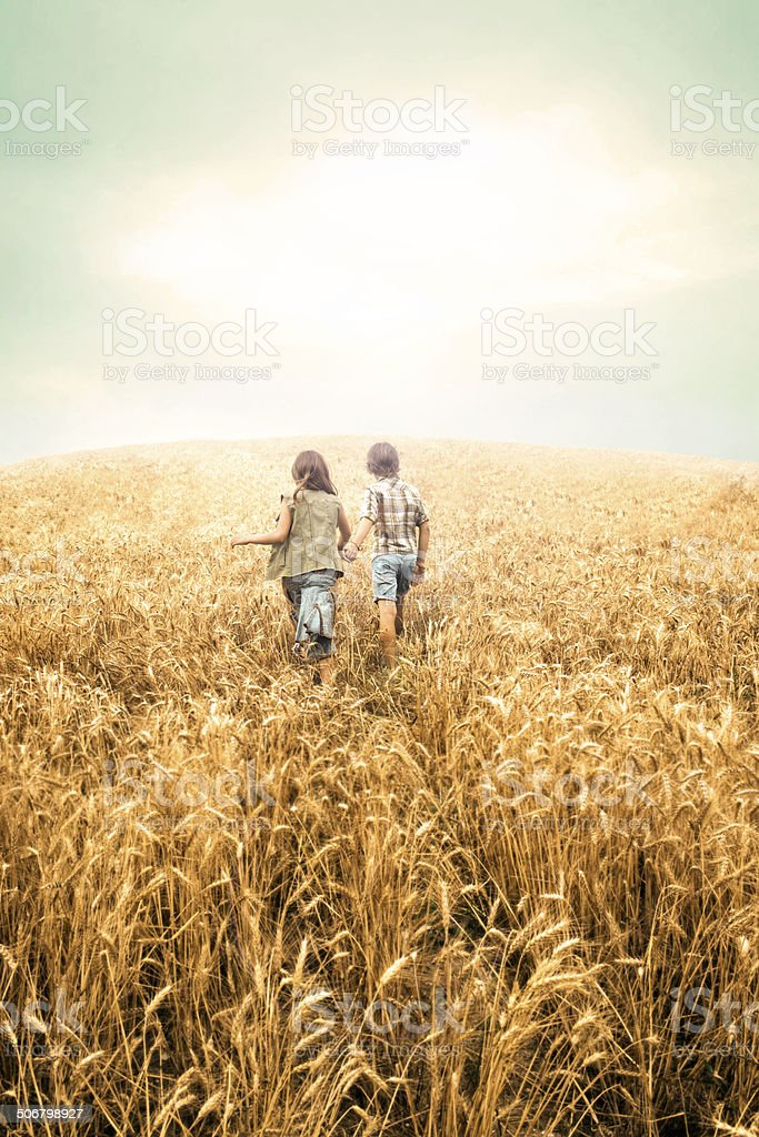 Children having fun in an wheat field at sunset stock photo